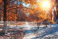Landscape in autumn park Stock Photos