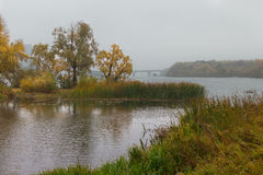 Landscape in autumn rainy day Royalty Free Stock Photography