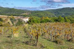 Landscape with autumn vineyards and farms royalty free stock photography