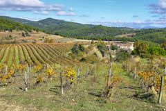 Landscape with autumn vineyards and farms royalty free stock images