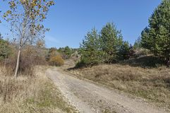Landscape of autumnal nature with  mix forest, dirt road and dry glade in Balkan mountain Stock Images