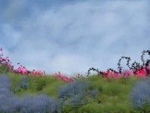 Landscape Backdrop Royalty Free Stock Photos