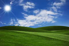 Landscape Background. Green Grass And Blue Sky Royalty Free Stock Photo