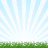Landscape background with grass and sky. Vector Stock Image