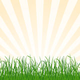 Landscape background with grass and sky. Vector Stock Photos