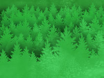 Landscape background with spruce forest Royalty Free Stock Photos