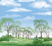 Landscape background, summer green forest and blue sky with clou Royalty Free Stock Photos