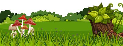 Free Landscape Background With Mushroom On Green Grass Stock Photography - 162249822