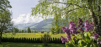 Landscape backyard view in Maria Alm, Austria Royalty Free Stock Photos