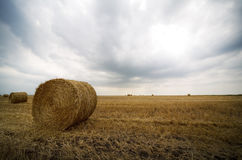 Landscape with bales. And dramatic sky Stock Photo