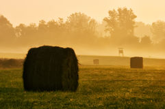 Landscape with bales. Beautiful landscape with straw bales at sunset Stock Photos