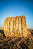 Landscape with bales of straw Royalty Free Stock Photography