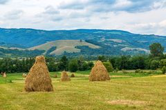 Landscape with bales of straw Stock Photo