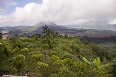 Landscape Bali Stock Images