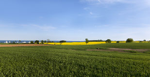 Landscape at the baltic sea panorama Royalty Free Stock Photography