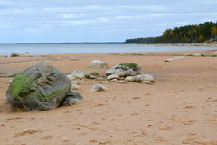 Landscape of Baltic seaside Royalty Free Stock Photography