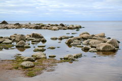 Landscape of Baltic seaside Stock Photography
