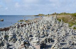 Landscape of Baltic seaside in an autumn day. Estonia, Saaremaa island, sunlight Stock Image