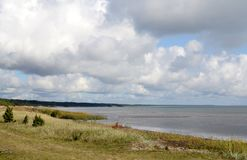 Landscape of Baltic seaside in an autumn day. Estonia, Saaremaa island, sunlight Stock Photography