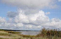 Landscape of Baltic seaside in an autumn day. Estonia, Saaremaa island, sunlight Stock Photos
