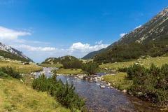 Landscape with Banderitsa River Valley, Pirin Mountain, Bulgaria Royalty Free Stock Photos