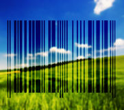 Landscape with barcode lines Royalty Free Stock Image