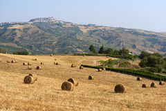 Landscape in Basilicata (Italy) at summer Royalty Free Stock Photography