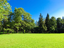Landscape bathed in sunlight lawn Royalty Free Stock Photography