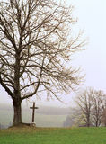 A landscape in Bavaria in the late autumn Royalty Free Stock Photography