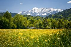 Landscape in the bavarian Alps Stock Images