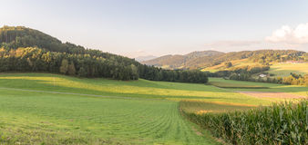 Landscape of bavarian forest with view to the mountain small and big Rachel.  stock photos