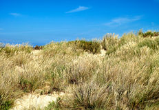 Landscape of a beach with dunes Stock Photo