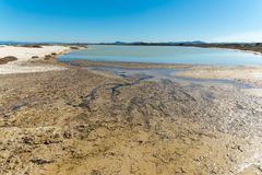Landscape of the beach of Le Saline. In north sardinia, in a sunny day, water, nature, sea, blue, sky, beautiful, coast, coastline, seascape, sand, shore stock photo
