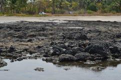 Landscape  on the beach Stock Photos