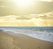 Landscape beach Stock Photography