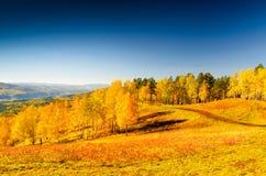 Beautiful autumn landscape. Fall season Royalty Free Stock Photo