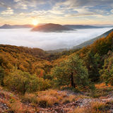 Landscape Beautiful autumn morning above deep forest valley. Royalty Free Stock Photo