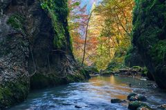 Autumna landscape with canyon and river. Landscape with a beautiful canyon in the fall Royalty Free Stock Image