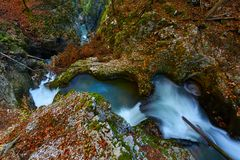Autumnal landscape with canyon and river. Landscape with a beautiful canyon in the fall Royalty Free Stock Photography