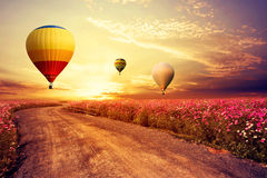 Landscape of beautiful cosmos flower field and hot air balloon on sky sunset. Vintage and retro filter effect style stock photo