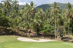 Landscape of a beautiful green golf course and coconut palm tree with sky, Thailand Stock Image