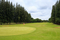 Landscape of a beautiful green golf course with sky Royalty Free Stock Photos