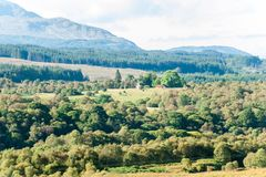 Landscape with beautiful green scottish forest, mountains and va royalty free stock photography