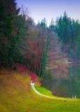 Landscape of a beautiful lake Royalty Free Stock Photo