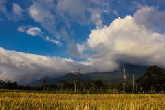 Landscape beautiful Mountain with padi field. Ciremai mountain landscape, the picture is taken from a paddy field of location Linggarjati Kuningan, West Java Stock Photo