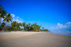 Landscape of beautiful tropical beach Royalty Free Stock Photo