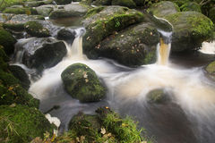 Landscape of Becky Falls waterfall in Dartmoor National Park Eng Royalty Free Stock Photos