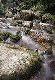 Landscape of Becky Falls waterfall in Dartmoor National Park Eng Royalty Free Stock Photo