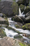 Landscape of Becky Falls waterfall in Dartmoor National Park Eng Royalty Free Stock Photography