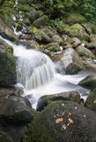 Landscape of Becky Falls waterfall in Dartmoor National Park Eng Stock Image